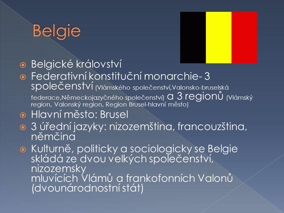  Belgické království  Federativní konstituční monarchie- 3 společenství (Vlámského společenství,Valonsko-bruselská federace,Německojazyčného společe