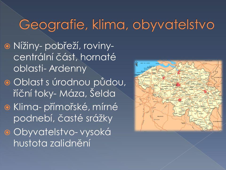  Nížiny- pobřeží, roviny- centrální část, hornaté oblasti- Ardenny  Oblast s úrodnou půdou, říční toky- Máza, Šelda  Klima- přímořské, mírné podneb