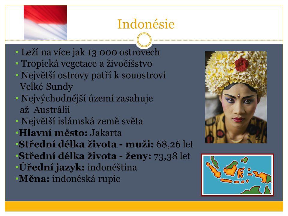 Indonésie Leží na více jak 13 000 ostrovech Tropická vegetace a živočišstvo Největší ostrovy patří k souostroví Velké Sundy Nejvýchodnější území zasah