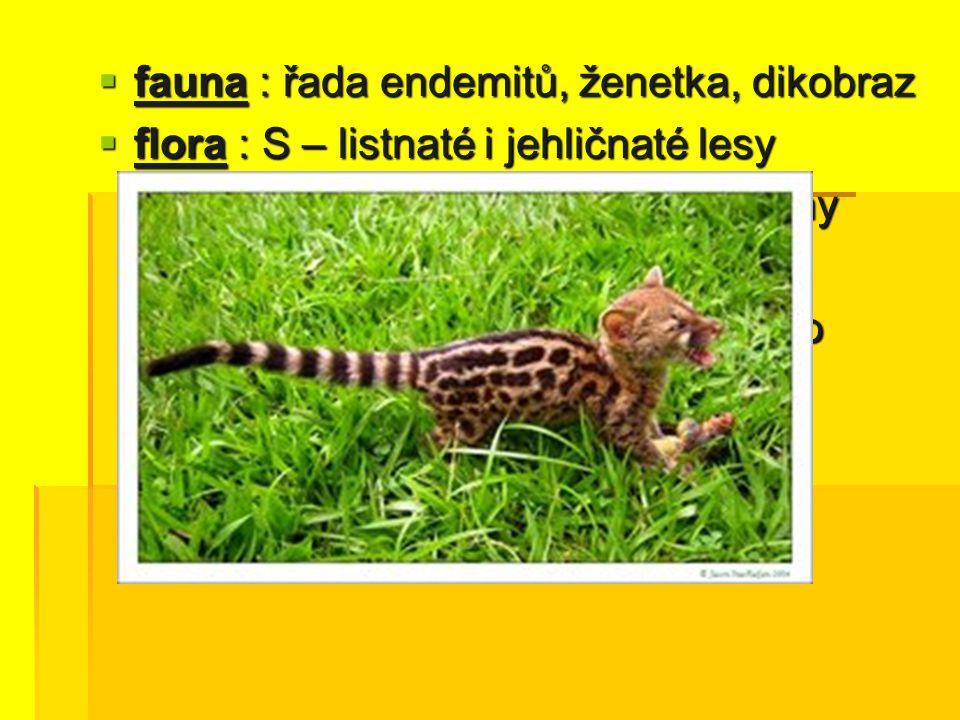  fauna : řada endemitů, ženetka, dikobraz  flora : S – listnaté i jehličnaté lesy J – korkové duby, místy palmy J – korkové duby, místy palmy Meseta