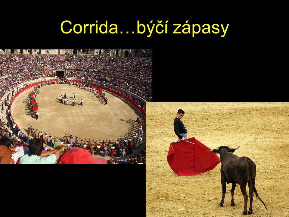 Corrida…býčí zápasy