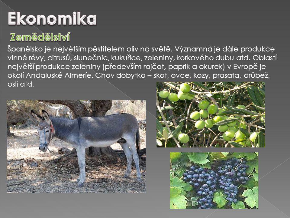 Španělsko je největším pěstitelem oliv na světě. Významná je dále produkce vinné révy, citrusů, slunečnic, kukuřice, zeleniny, korkového dubu atd. Obl