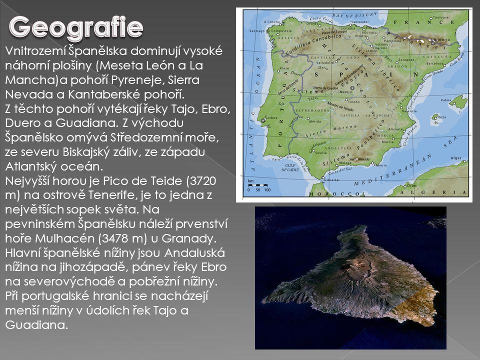 Vnitrozemí Španělska dominují vysoké náhorní plošiny (Meseta León a La Mancha)a pohoří Pyreneje, Sierra Nevada a Kantaberské pohoří. Z těchto pohoří v