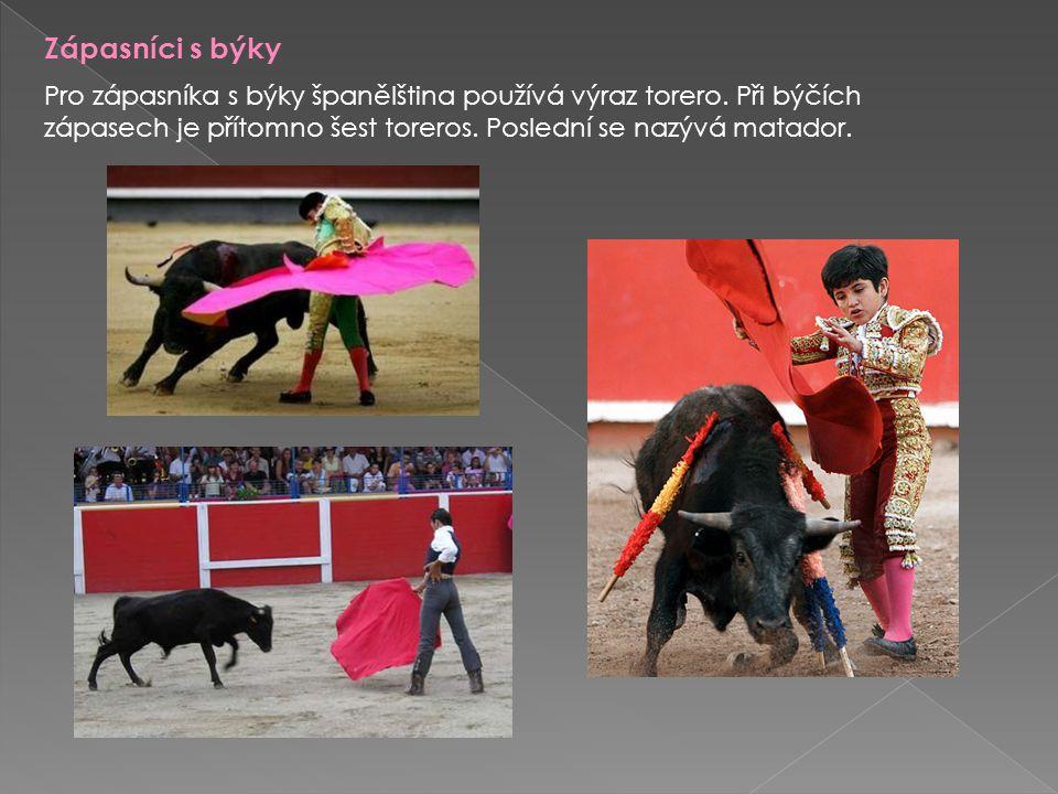 Zápasníci s býky Pro zápasníka s býky španělština používá výraz torero. Při býčích zápasech je přítomno šest toreros. Poslední se nazývá matador.