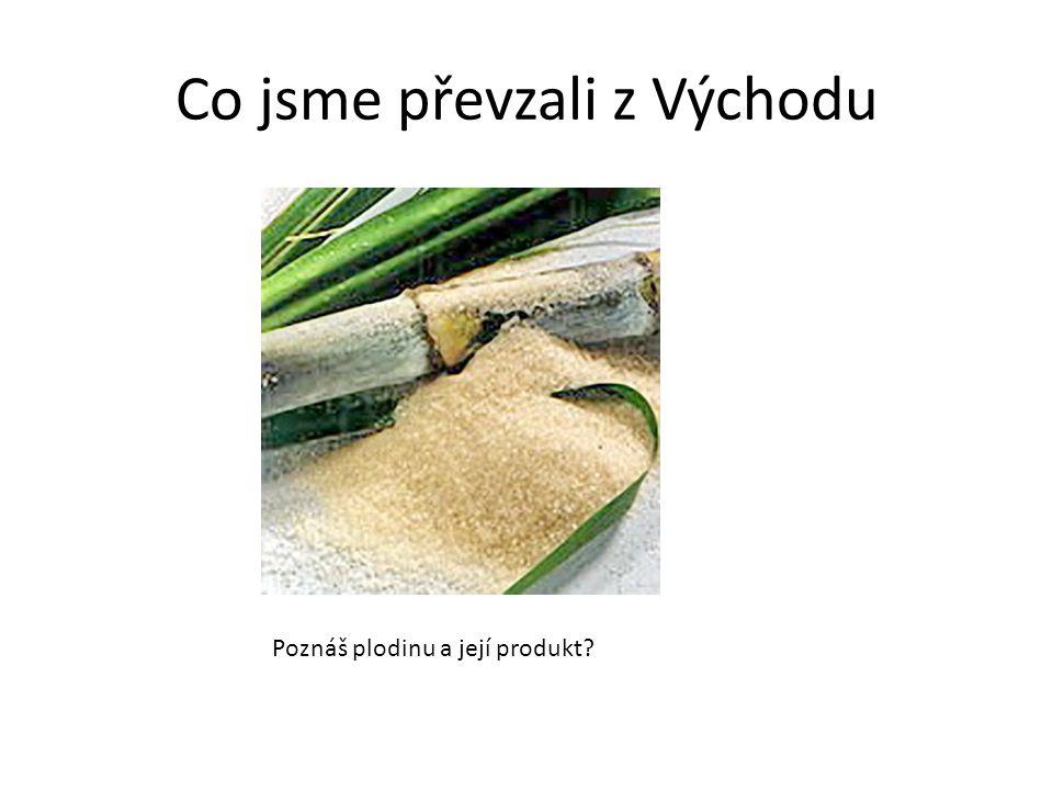 Co jsme převzali z Východu Poznáš plodinu a její produkt?