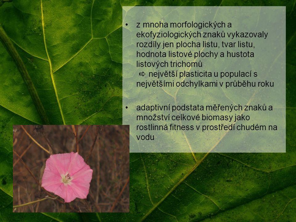 z mnoha morfologických a ekofyziologických znaků vykazovaly rozdíly jen plocha listu, tvar listu, hodnota listové plochy a hustota listových trichomů