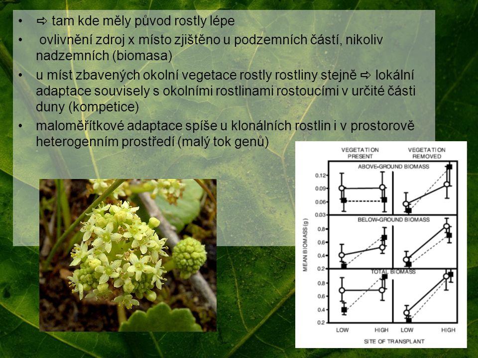 tam kde měly původ rostly lépe ovlivnění zdroj x místo zjištěno u podzemních částí, nikoliv nadzemních (biomasa) u míst zbavených okolní vegetace ro