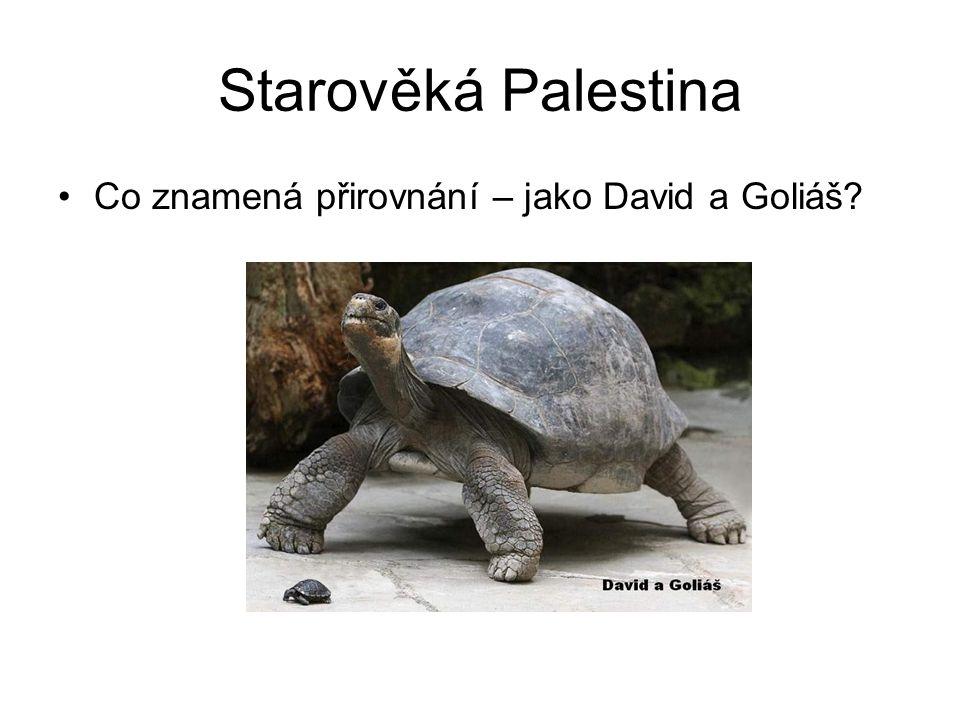 Starověká Palestina Co znamená přirovnání – jako David a Goliáš?