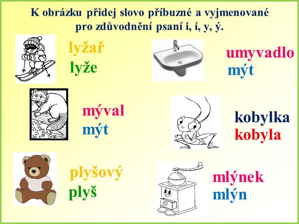 K obrázku přidej slovo příbuzné a vyjmenované pro zdůvodnění psaní i, í, y, ý.