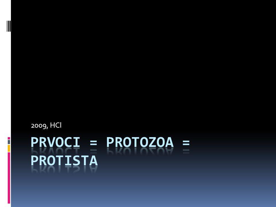 Prvoci - obecně  Říše prvoků=1buněčná eukaryota  1 buňka je schopna vykonávat všechny funkce k zajištění života  Má vytvořeny organely pro tyto fce