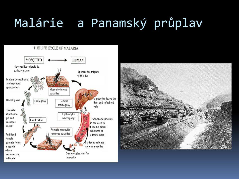 Malárie a Panamský průplav