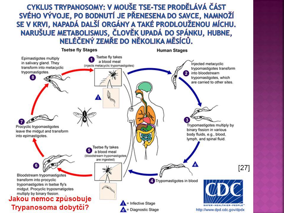 Jakou nemoc způsobuje Trypanosoma dobytčí? [27]