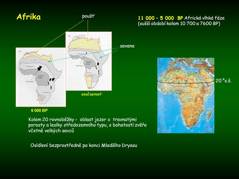 Afrika současnost 6 000 BP 11 000 – 5 000 BP Africká vlhká fáze (sušší období kolem 10 700 a 7600 BP) Kolem 20 rovnoběžky - oblast jezer s travnatými porosty a lesíky středozemního typu, s bohatostí zvěře včetně velkých savců Osídlení bezprostředně po konci Mladšího Dryasu poušť savana 20 °s.š.