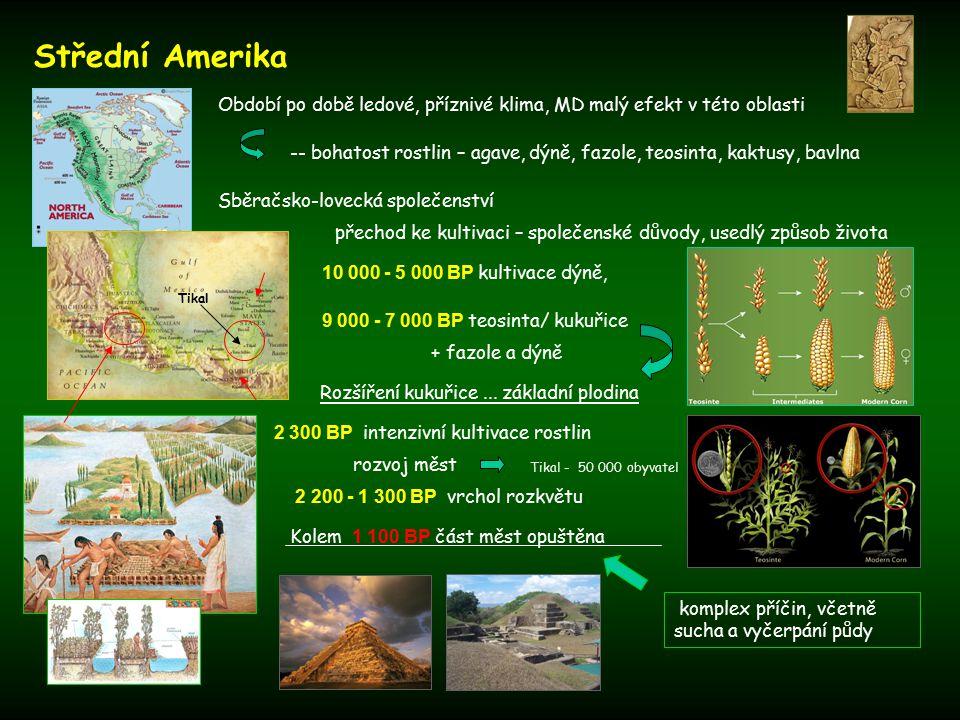 Střední Amerika Období po době ledové, příznivé klima, MD malý efekt v této oblasti 10 000 - 5 000 BP kultivace dýně, 9 000 - 7 000 BP teosinta/ kukuřice Rozšíření kukuřice...