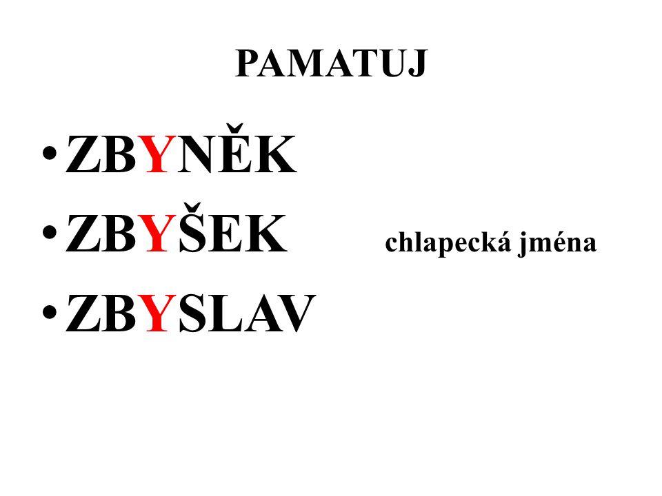 PAMATUJ ZBYNĚK ZBYŠEK chlapecká jména ZBYSLAV