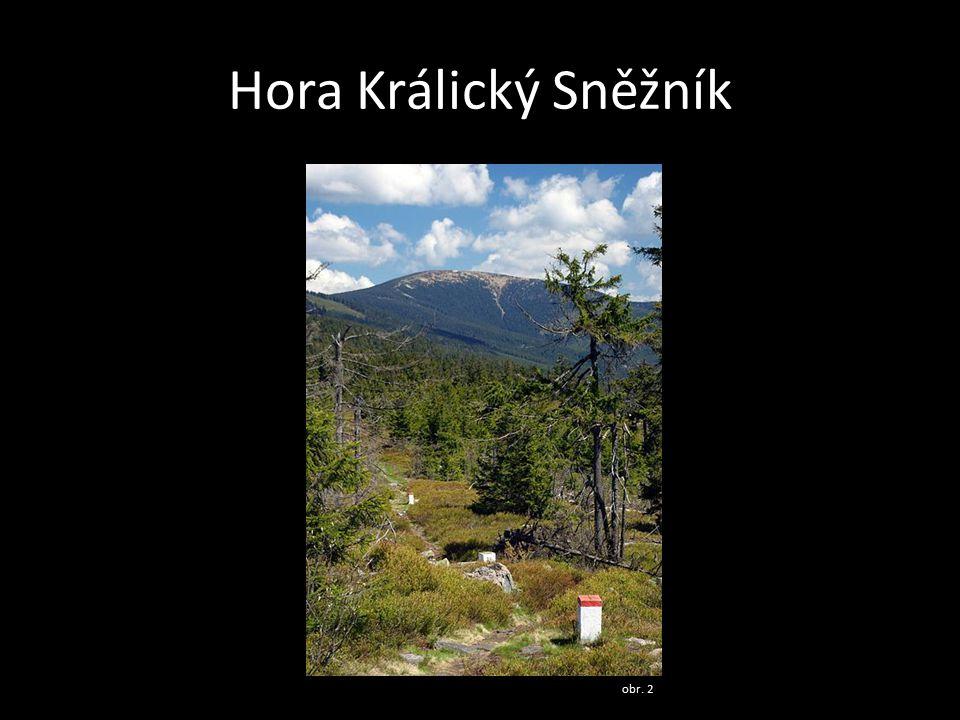Hora Králický Sněžník obr. 2