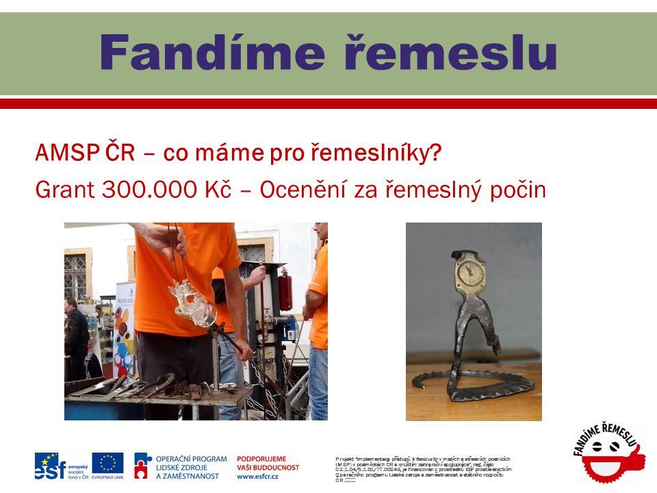 AMSP ČR – co máme pro řemeslníky? Grant 300.000 Kč – Ocenění za řemeslný počin Projekt