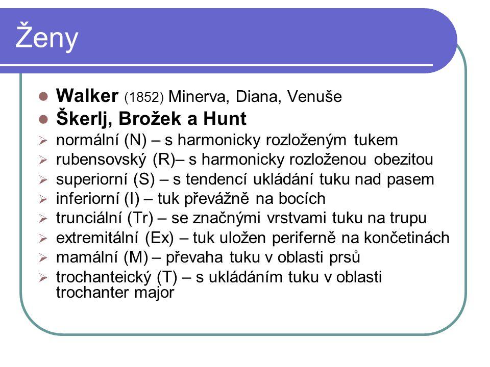 Ženy Walker (1852) Minerva, Diana, Venuše Škerlj, Brožek a Hunt  normální (N) – s harmonicky rozloženým tukem  rubensovský (R)– s harmonicky rozlože