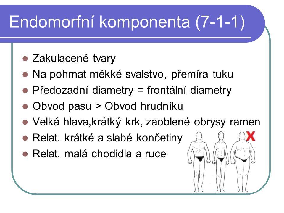 Endomorfní komponenta (7-1-1) Zakulacené tvary Na pohmat měkké svalstvo, přemíra tuku Předozadní diametry = frontální diametry Obvod pasu > Obvod hrud
