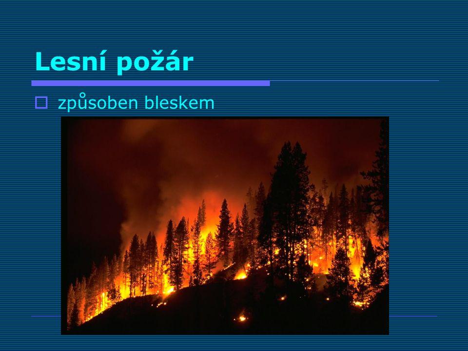 Lesní požár  způsoben bleskem