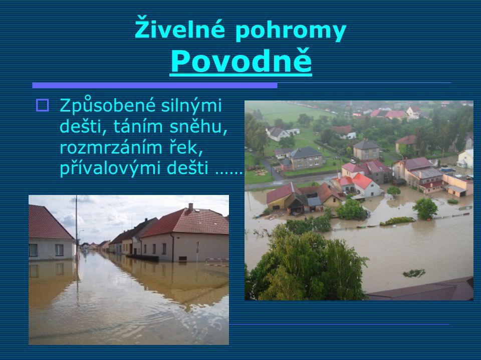 Živelné pohromy Povodně  Způsobené silnými dešti, táním sněhu, rozmrzáním řek, přívalovými dešti ……