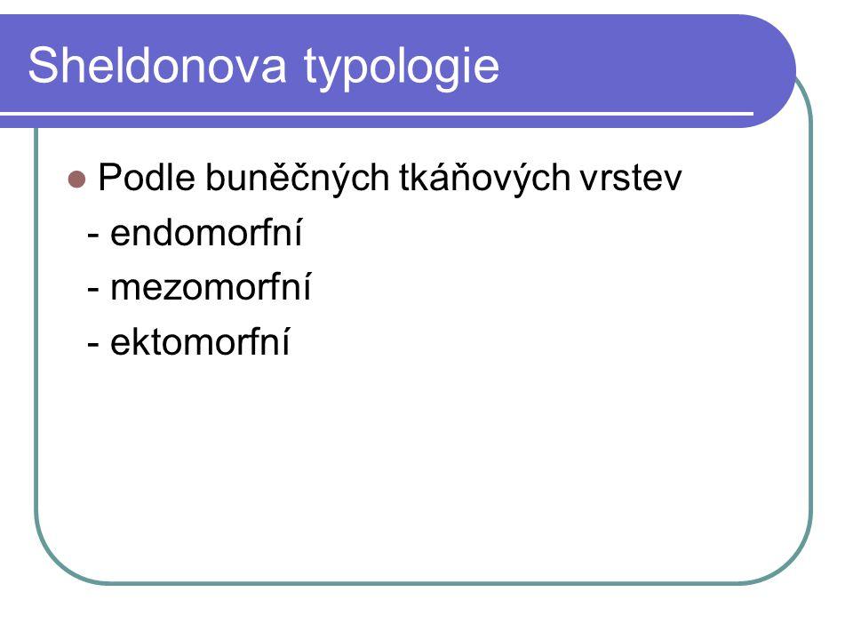 Sheldonova typologie Podle buněčných tkáňových vrstev - endomorfní - mezomorfní - ektomorfní