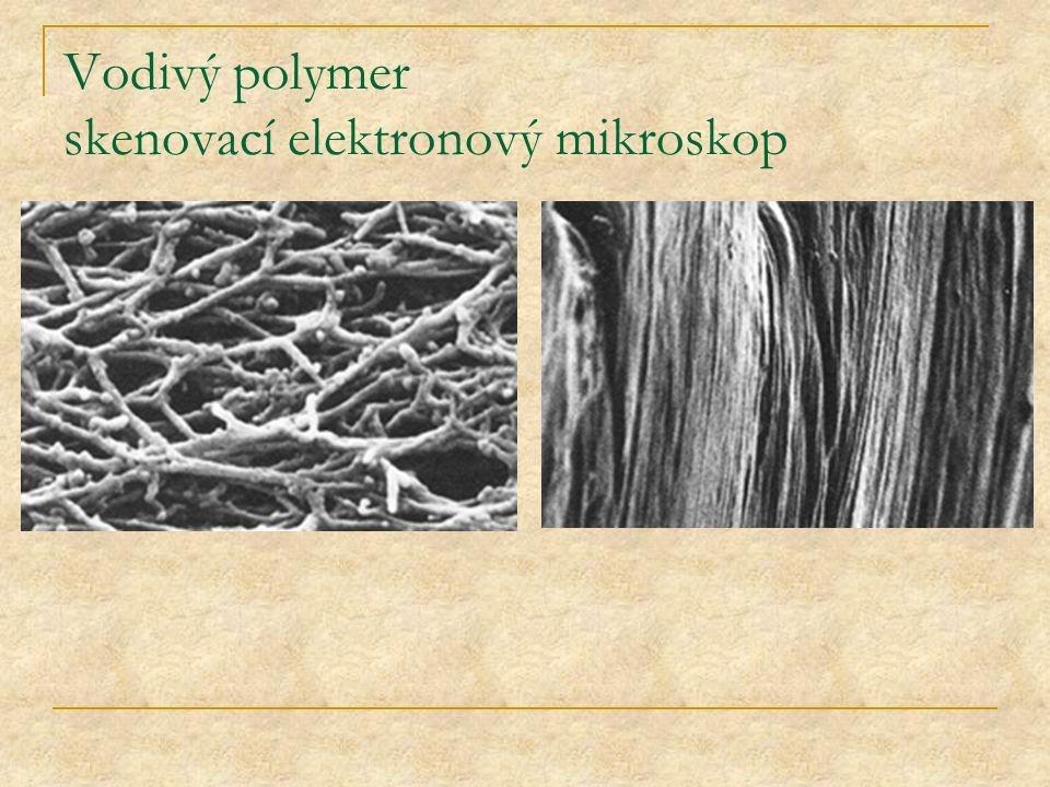 Vodivý polymer skenovací elektronový mikroskop