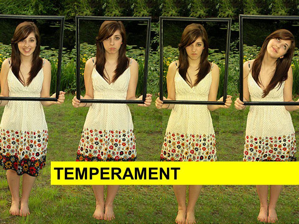 Osnova Co je temperament Typy temperamentu Cholerik Sangvinik Flegmatik Melancholik Zamyšlení na závěr