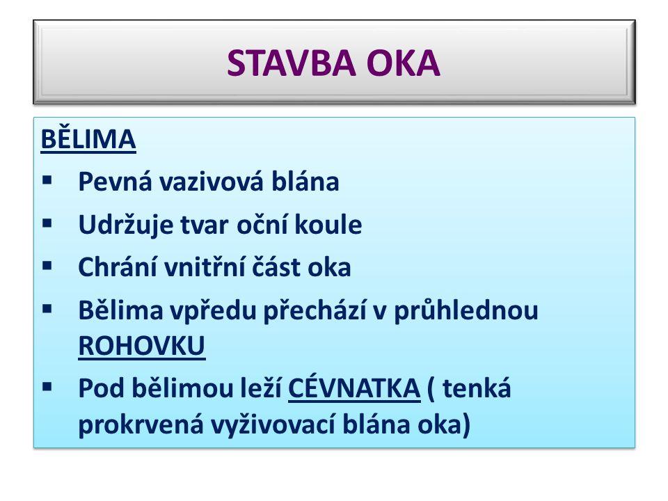 STAVBA OKA BĚLIMA  Pevná vazivová blána  Udržuje tvar oční koule  Chrání vnitřní část oka  Bělima vpředu přechází v průhlednou ROHOVKU  Pod bělim