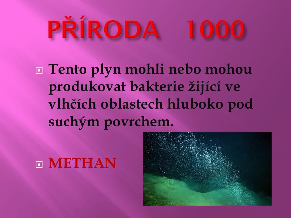 Tento plyn mohli nebo mohou produkovat bakterie žijící ve vlhčích oblastech hluboko pod suchým povrchem.