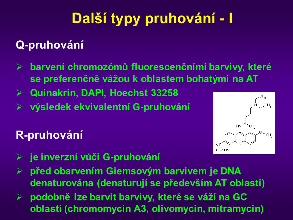 Další typy pruhování - I Q-pruhování  barvení chromozómů fluorescenčními barvivy, které se preferenčně vážou k oblastem bohatými na AT  Quinakrin, DAPI, Hoechst 33258  výsledek ekvivalentní G-pruhování R-pruhování  je inverzní vůči G-pruhování  před obarvením Giemsovým barvivem je DNA denaturována (denaturují se především AT oblasti)  podobně lze barvit barvivy, které se váží na GC oblasti (chromomycin A3, olivomycin, mitramycin)