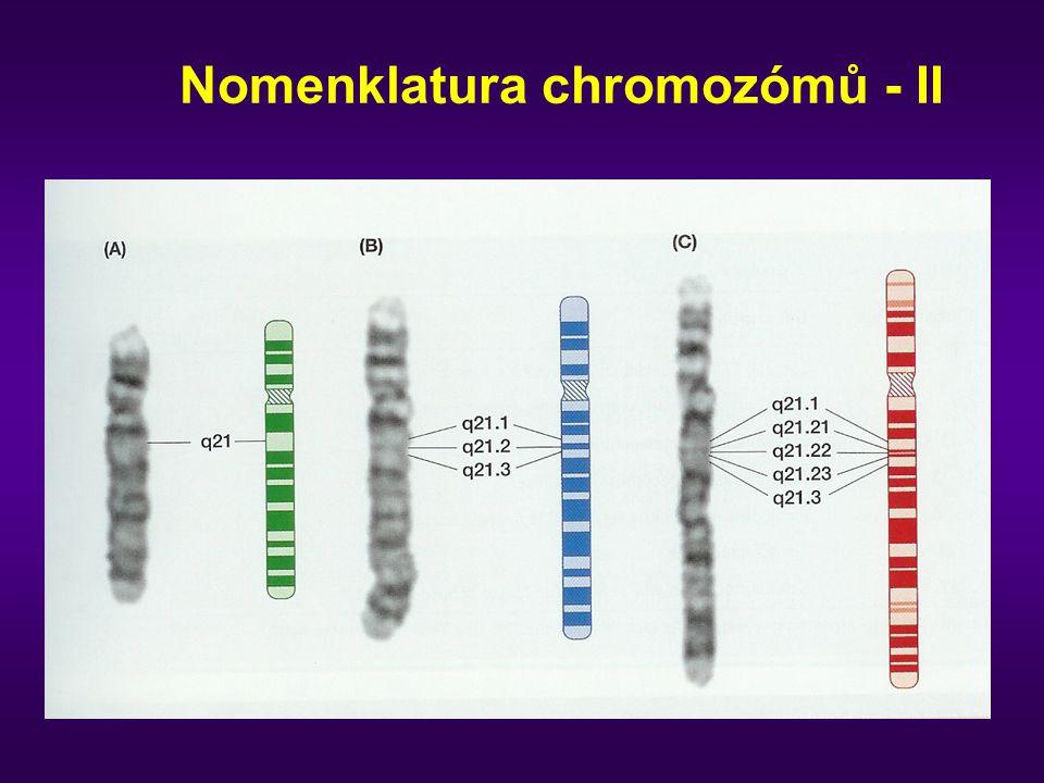 Nomenklatura chromozómů - II