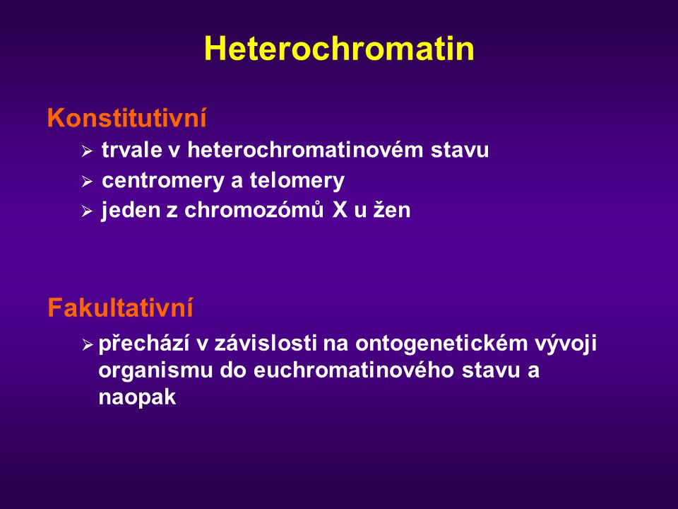 Heterochromatin Konstitutivní  trvale v heterochromatinovém stavu  centromery a telomery  jeden z chromozómů X u žen Fakultativní  přechází v závislosti na ontogenetickém vývoji organismu do euchromatinového stavu a naopak