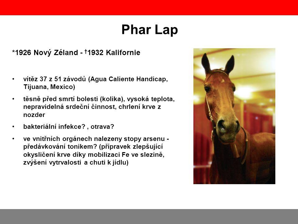 Phar Lap *1926 Nový Zéland - † 1932 Kalifornie vítěz 37 z 51 závodů (Agua Caliente Handicap, Tijuana, Mexico) těsně před smrtí bolesti (kolika), vysok