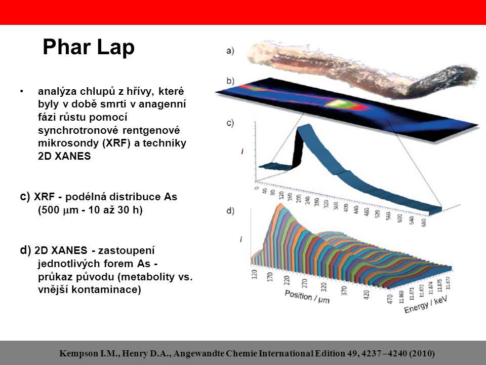 Phar Lap analýza chlupů z hřívy, které byly v době smrti v anagenní fázi růstu pomocí synchrotronové rentgenové mikrosondy (XRF) a techniky 2D XANES c