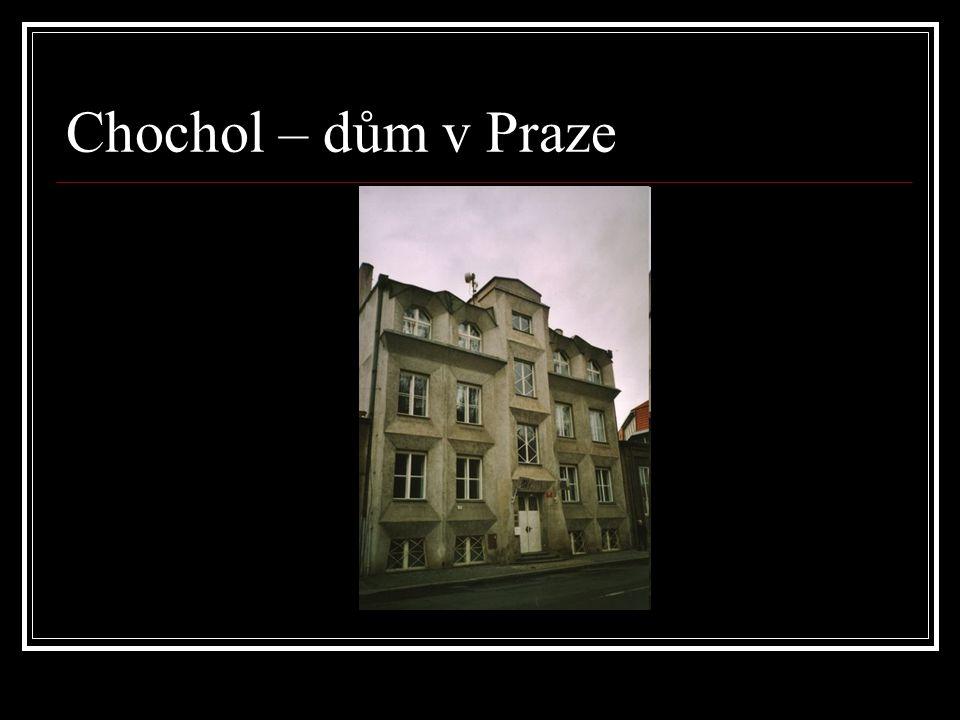 Chochol – dům v Praze