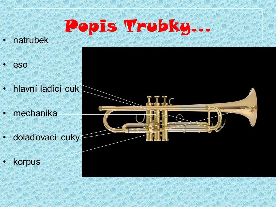 Historie Trubka, podobně jako ostatní žesťové nástroje, má svůj původ v hraní na zvířecí rohy či duté zvířecí kosti.