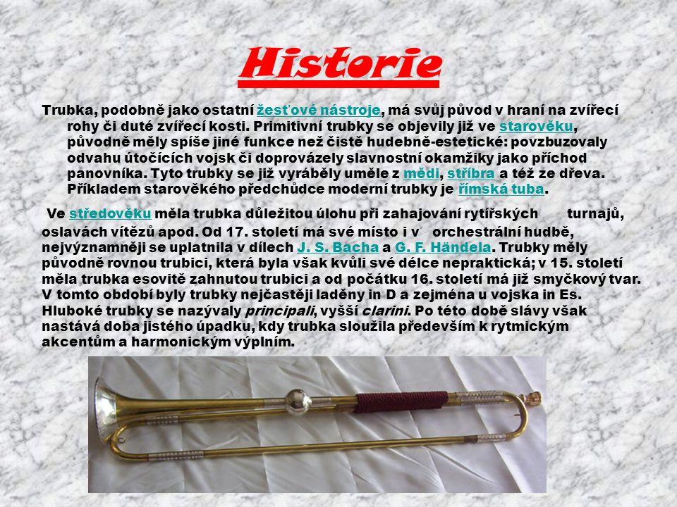 Historie Trubka, podobně jako ostatní žesťové nástroje, má svůj původ v hraní na zvířecí rohy či duté zvířecí kosti. Primitivní trubky se objevily již