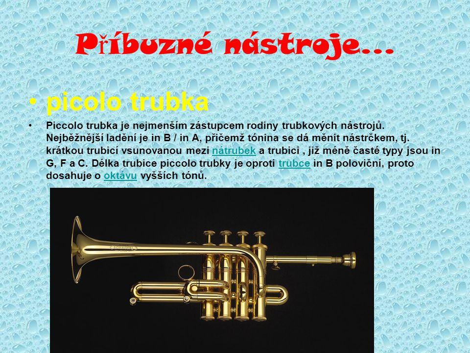 P ř íbuzné nástroje... picolo trubka Piccolo trubka je nejmenším zástupcem rodiny trubkových nástrojů. Nejběžnější ladění je in B / in A, přičemž tóni