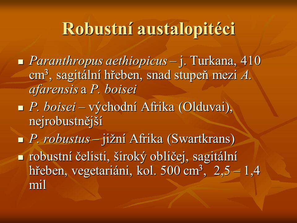 Robustní austalopitéci Paranthropus aethiopicus – j.