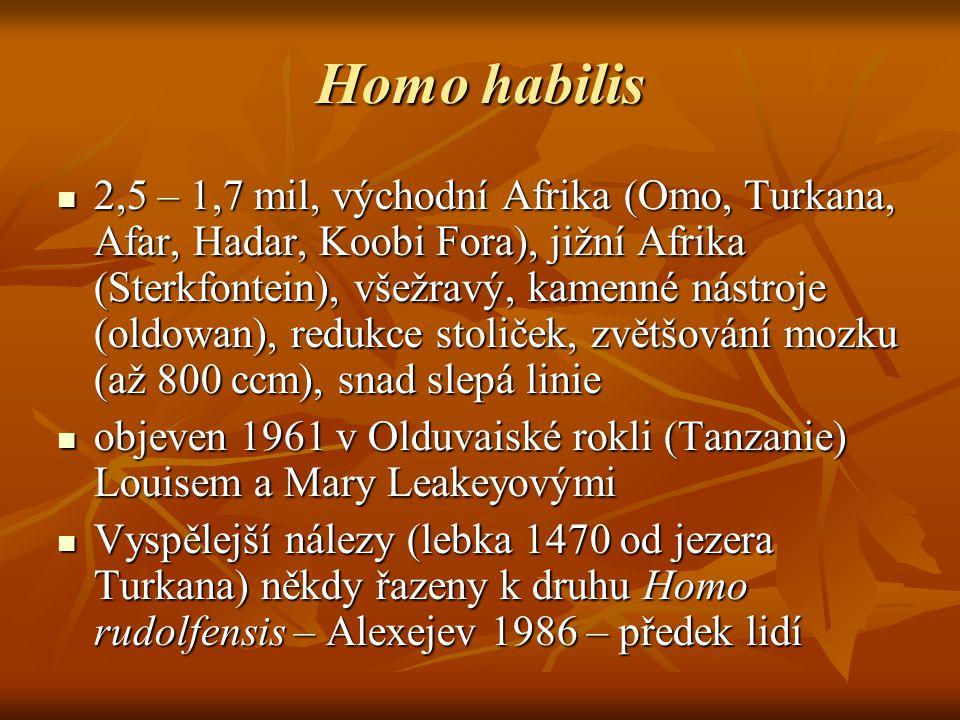 Homo habilis 2,5 – 1,7 mil, východní Afrika (Omo, Turkana, Afar, Hadar, Koobi Fora), jižní Afrika (Sterkfontein), všežravý, kamenné nástroje (oldowan), redukce stoliček, zvětšování mozku (až 800 ccm), snad slepá linie 2,5 – 1,7 mil, východní Afrika (Omo, Turkana, Afar, Hadar, Koobi Fora), jižní Afrika (Sterkfontein), všežravý, kamenné nástroje (oldowan), redukce stoliček, zvětšování mozku (až 800 ccm), snad slepá linie objeven 1961 v Olduvaiské rokli (Tanzanie) Louisem a Mary Leakeyovými objeven 1961 v Olduvaiské rokli (Tanzanie) Louisem a Mary Leakeyovými Vyspělejší nálezy (lebka 1470 od jezera Turkana) někdy řazeny k druhu Homo rudolfensis – Alexejev 1986 – předek lidí Vyspělejší nálezy (lebka 1470 od jezera Turkana) někdy řazeny k druhu Homo rudolfensis – Alexejev 1986 – předek lidí