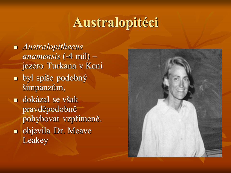 Homo erectus Popsán 1894 jako Pithecanthropus erectus (E.