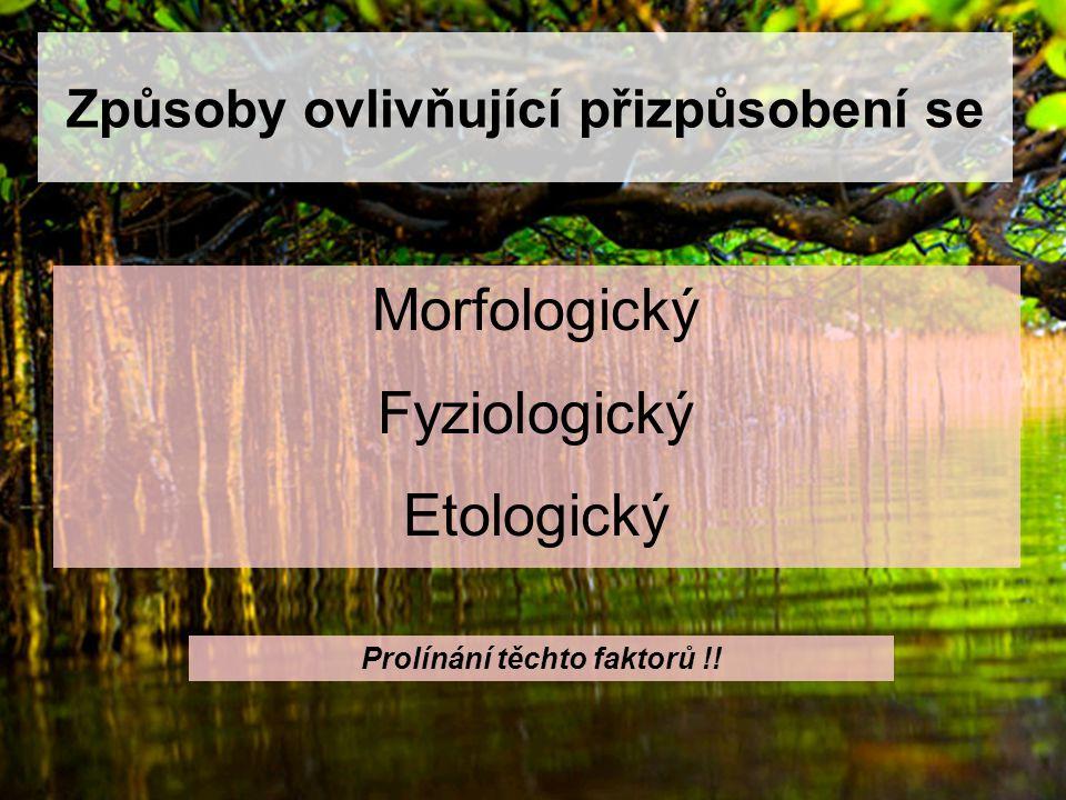 Způsoby ovlivňující přizpůsobení se Morfologický Fyziologický Etologický Prolínání těchto faktorů !!