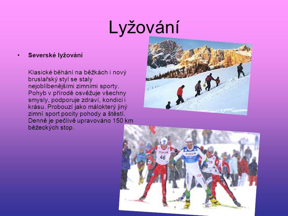 Lyžování Severské lyžování Klasické běhání na běžkách i nový bruslařský styl se staly nejoblíbenějšími zimními sporty. Pohyb v přírodě osvěžuje všechn