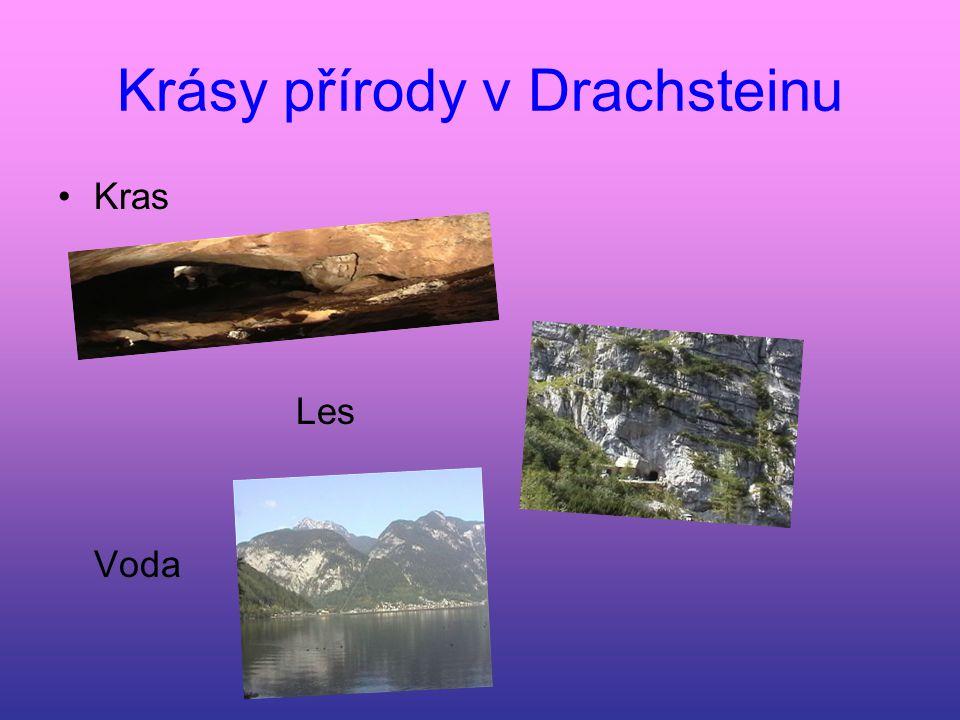 Krásy přírody v Drachsteinu Kras Les Voda