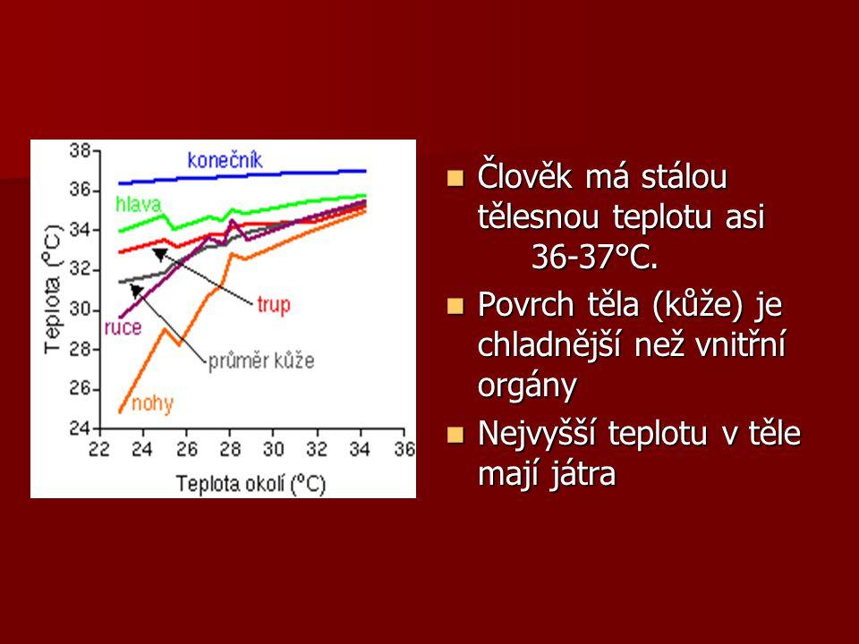 Termoregulace = schopnost udržovat stálou tělesnou teplotu(ta stále kolísá) = rovnováha mezi výrobou a výdejem tepla Centrum v hypotalamu – do něj přicházejí signály z termoreceptorů (v kůži a míše) Centrum v hypotalamu – do něj přicházejí signály z termoreceptorů (v kůži a míše) Začíná selhávat při teplotách vyšších než 50°C a nižších než 0°C Začíná selhávat při teplotách vyšších než 50°C a nižších než 0°C