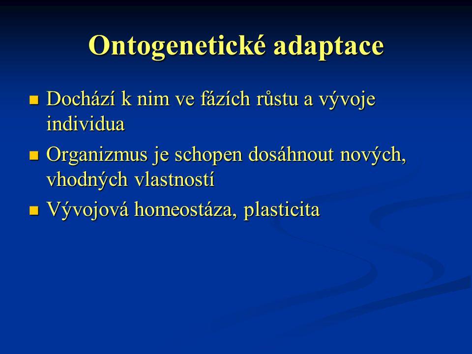 Ontogenetické adaptace Dochází k nim ve fázích růstu a vývoje individua Dochází k nim ve fázích růstu a vývoje individua Organizmus je schopen dosáhno