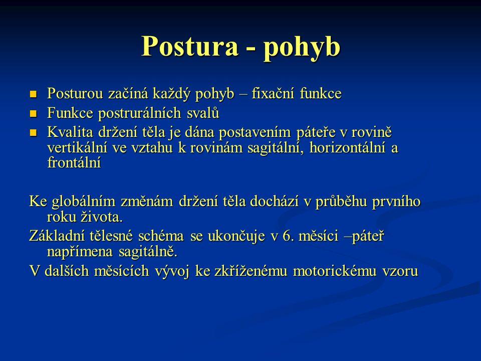 Postura - pohyb Posturou začíná každý pohyb – fixační funkce Posturou začíná každý pohyb – fixační funkce Funkce postrurálních svalů Funkce postruráln