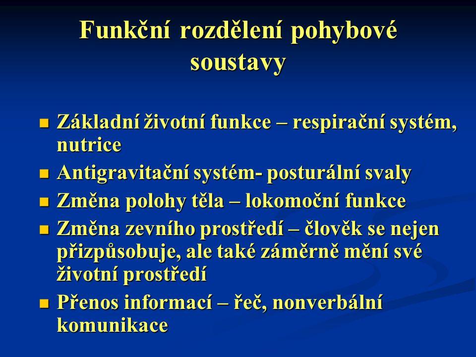 Funkční rozdělení pohybové soustavy Základní životní funkce – respirační systém, nutrice Základní životní funkce – respirační systém, nutrice Antigrav