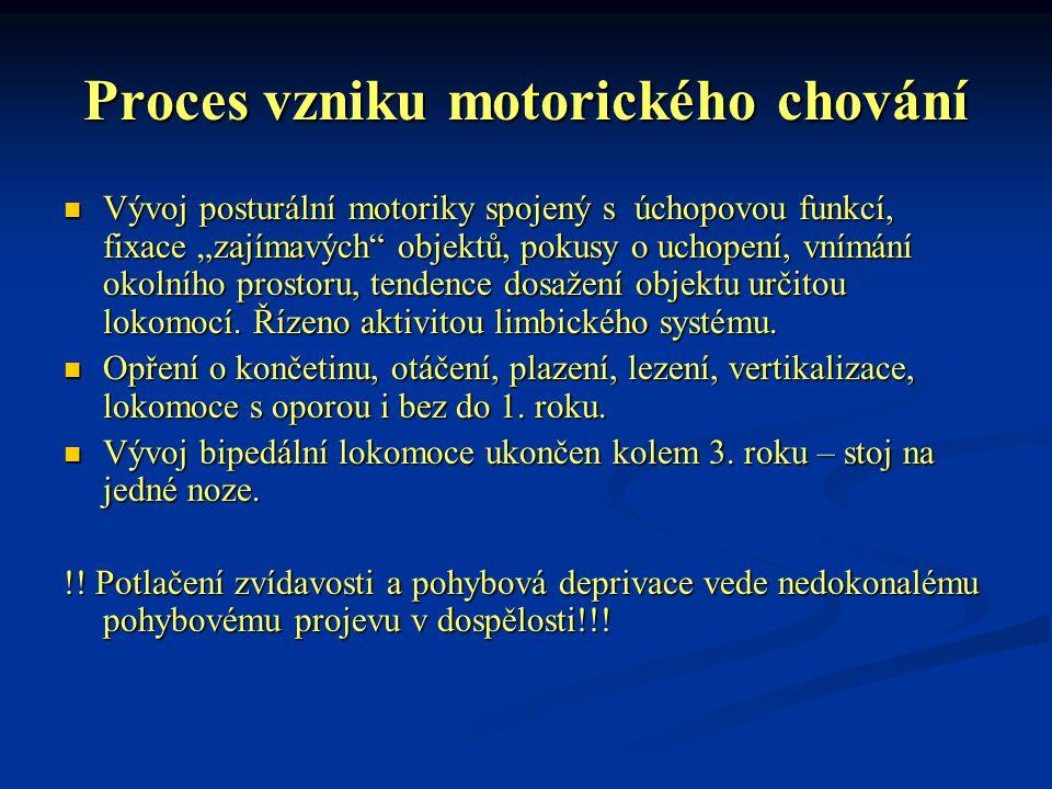 """Proces vzniku motorického chování Vývoj posturální motoriky spojený s úchopovou funkcí, fixace """"zajímavých"""" objektů, pokusy o uchopení, vnímání okolní"""